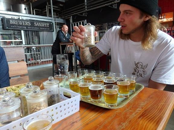 ビール試飲