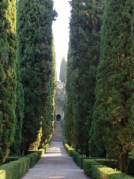 グロッタまで続く糸杉