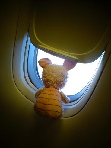 窓から空をながめるケムちゃん
