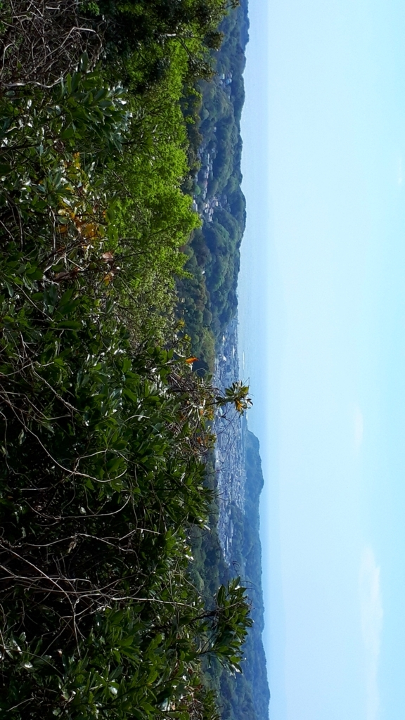 f:id:ken-jiiji-itohkun:20180430140547j:plain