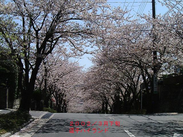 f:id:ken-jiiji-itohkun:20190406144507j:plain