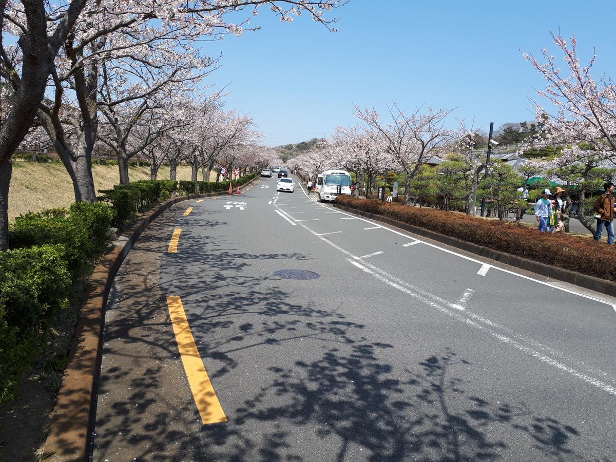 f:id:ken-jiiji-itohkun:20190407110724j:plain