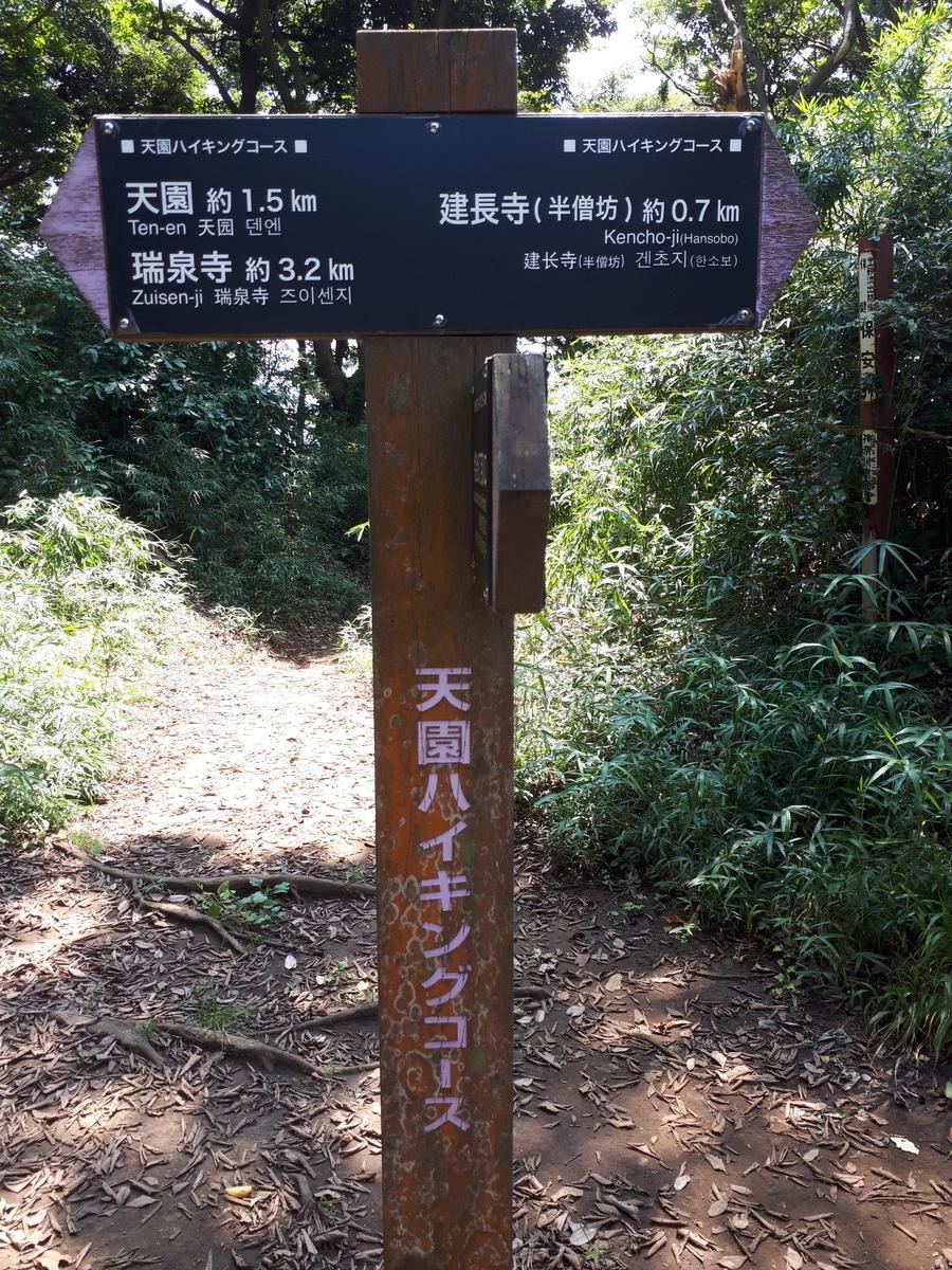 f:id:ken-jiiji-itohkun:20200804164621j:plain