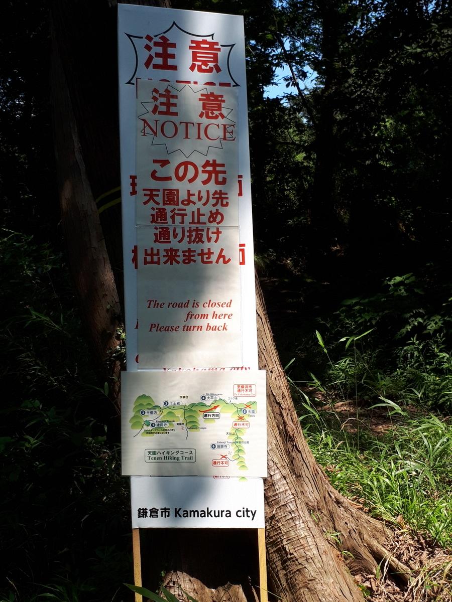 f:id:ken-jiiji-itohkun:20200804164739j:plain