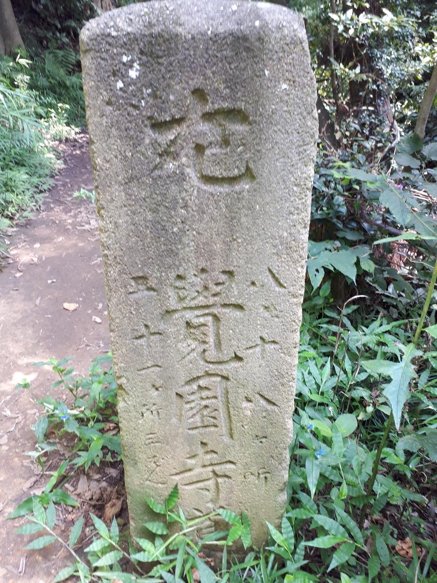 f:id:ken-jiiji-itohkun:20200804164926j:plain