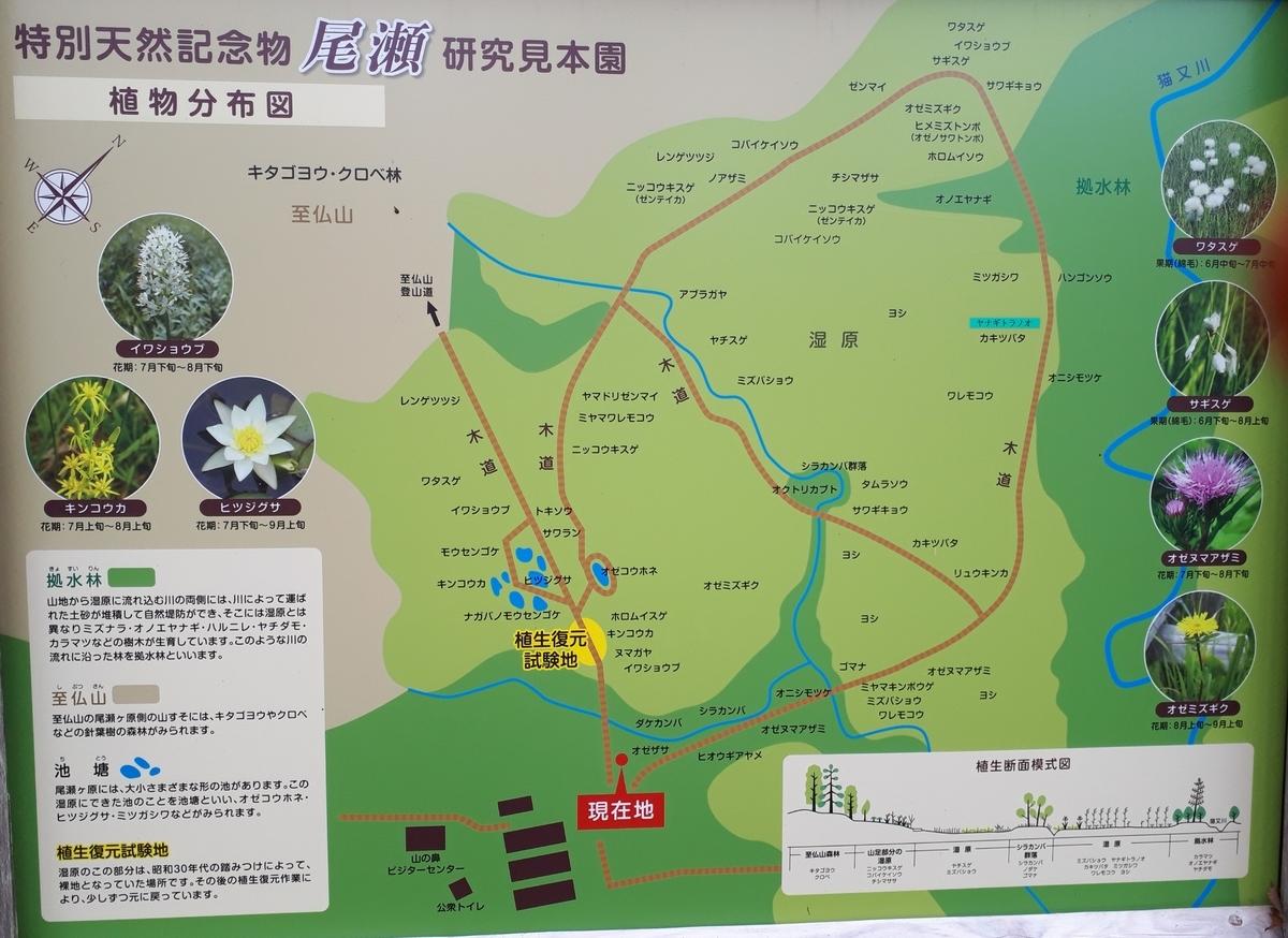 f:id:ken-jiiji-itohkun:20201024213105j:plain
