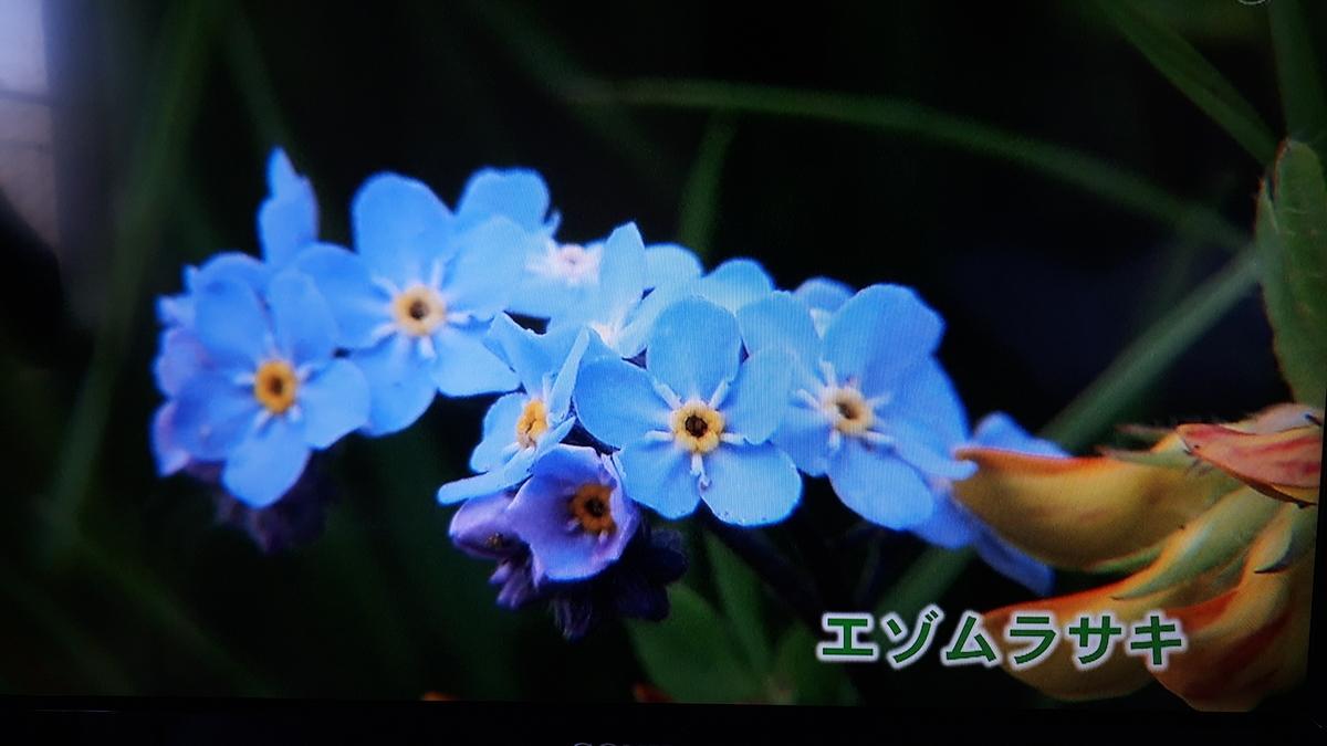 f:id:ken-jiiji-itohkun:20210329210621j:plain