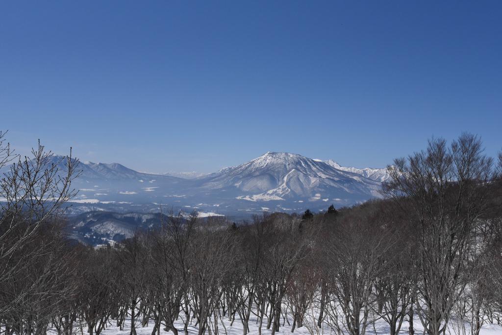 f:id:ken-shibu:20190306174615j:plain