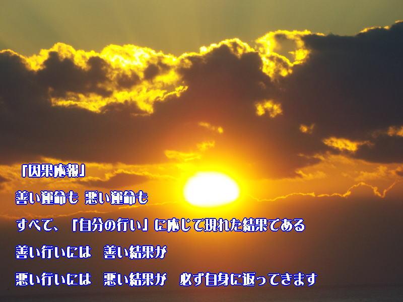 f:id:ken102019:20200205110500j:plain