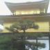 [京都][金閣寺][サムネイル]サムネイル用金閣寺