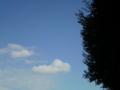雨のあと きれいになった 青い空