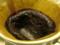 今日のすり鉢はいいんじゃないかな?…写真ではわからないか。