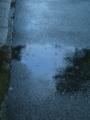 水たまり のぞきこんだら 青い空 #jhaiku 突然ザザァっときて、やんじゃ