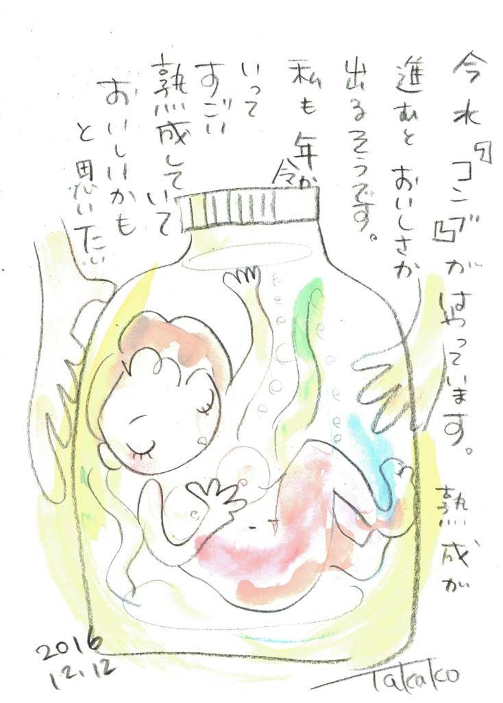 f:id:ken2daisuki:20161216084234j:plain