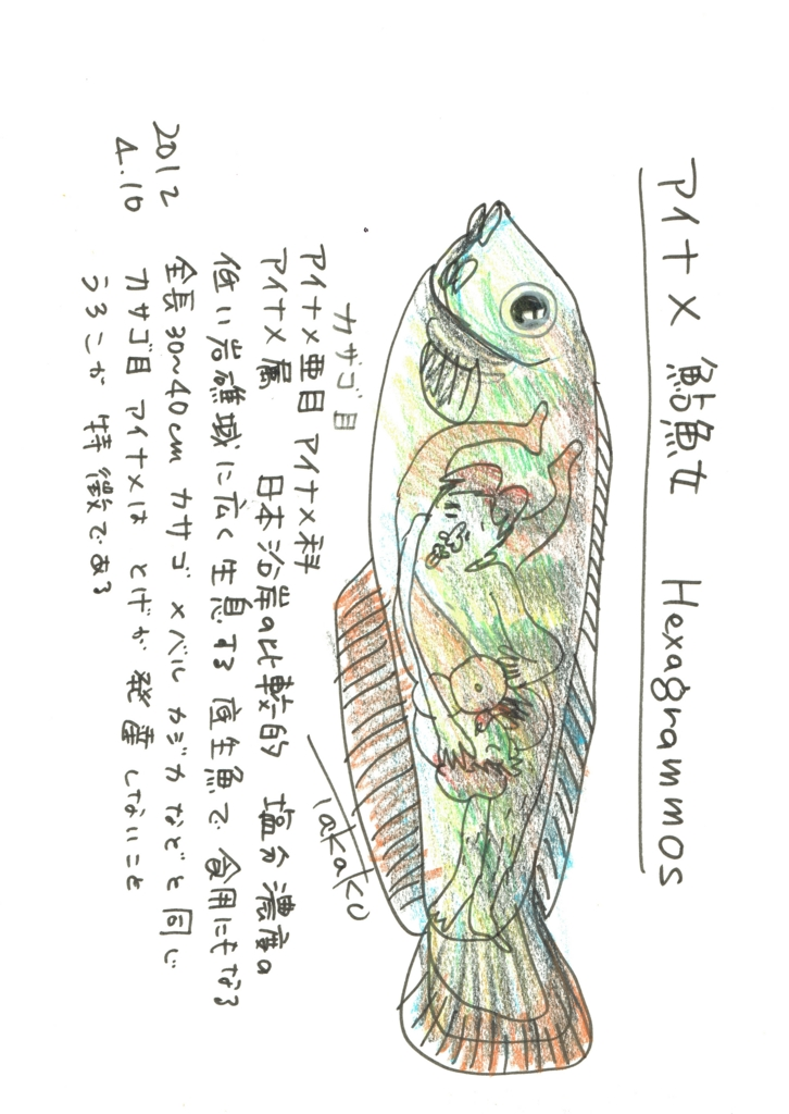 f:id:ken2daisuki:20170129103646j:plain