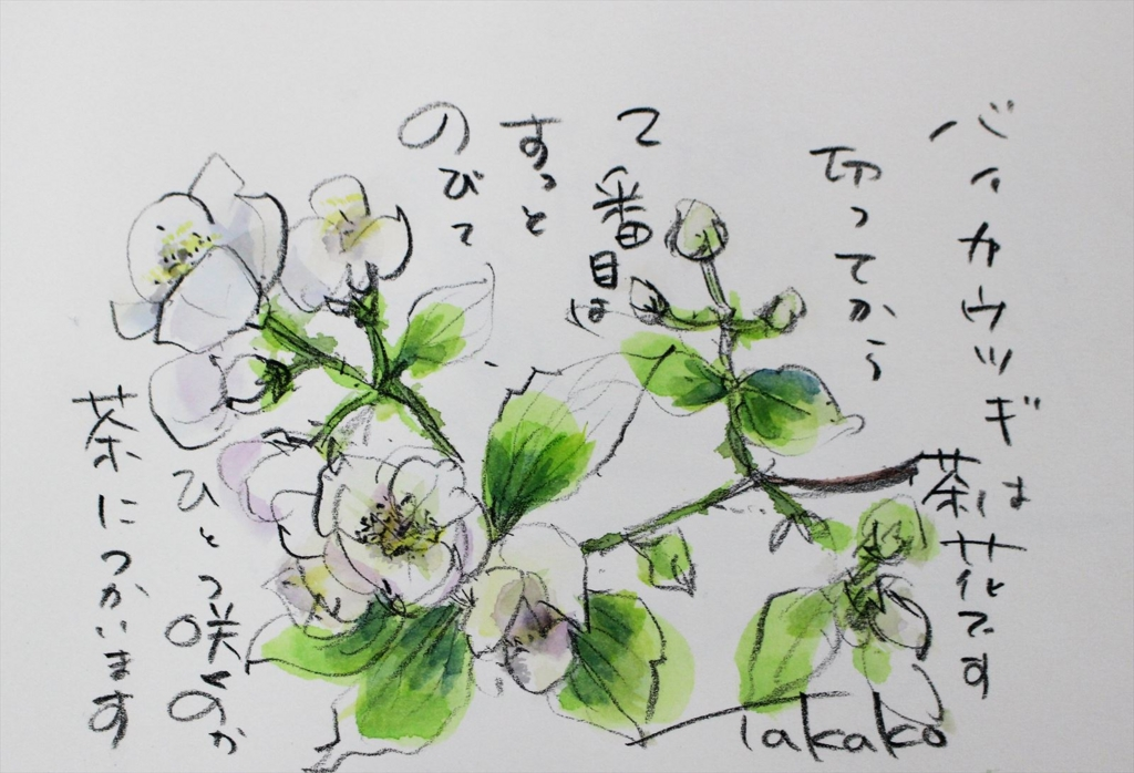 f:id:ken2daisuki:20170330090735j:plain