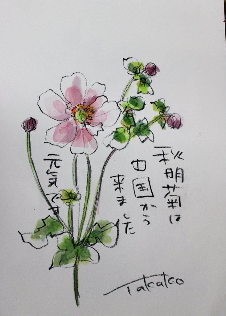 f:id:ken2daisuki:20170330090756j:plain