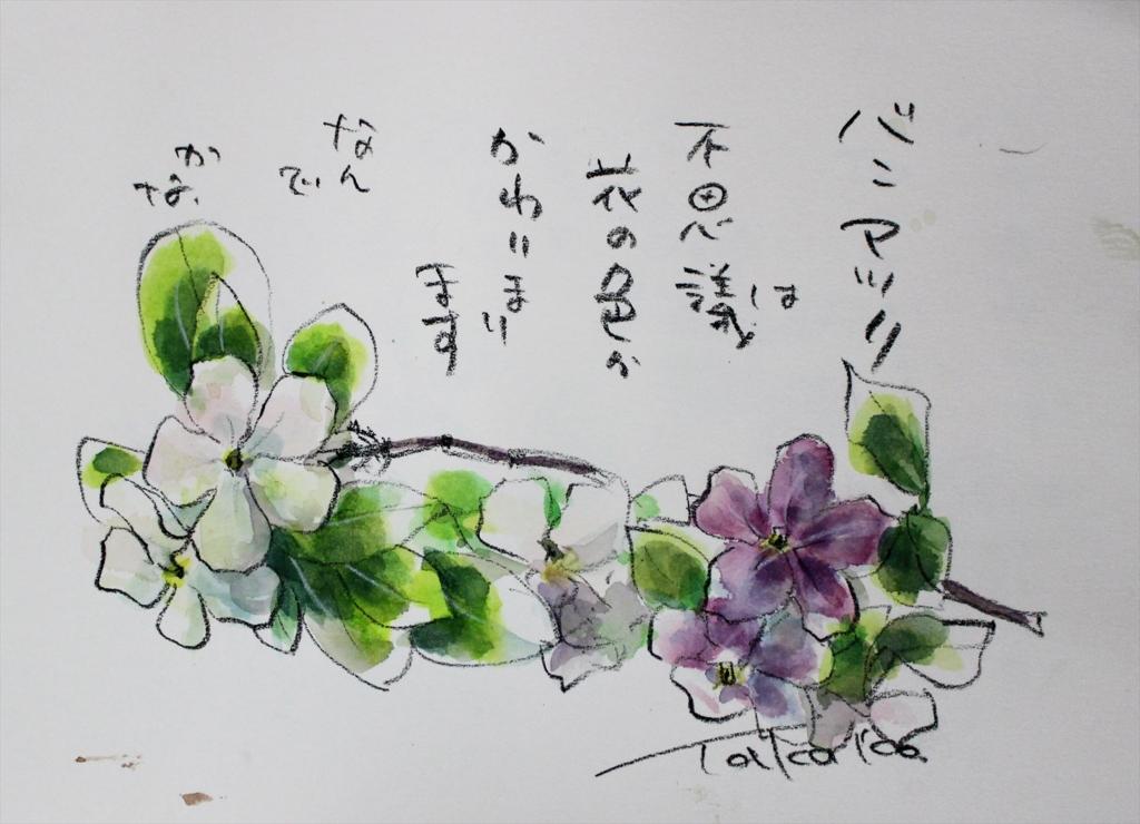 f:id:ken2daisuki:20170330090834j:plain
