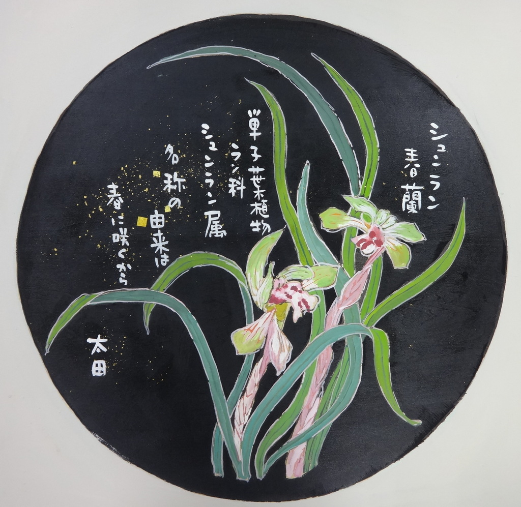 f:id:ken2daisuki:20170523143953j:plain