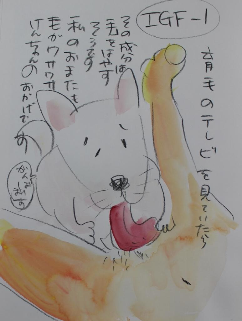 f:id:ken2daisuki:20170922145642j:plain