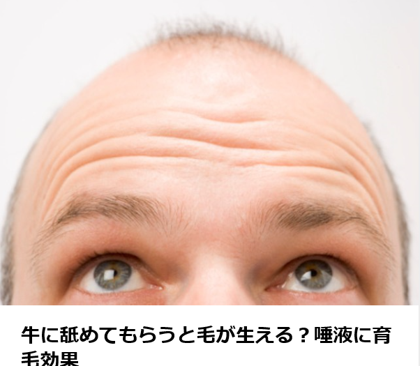 f:id:ken2daisuki:20170922145930p:plain