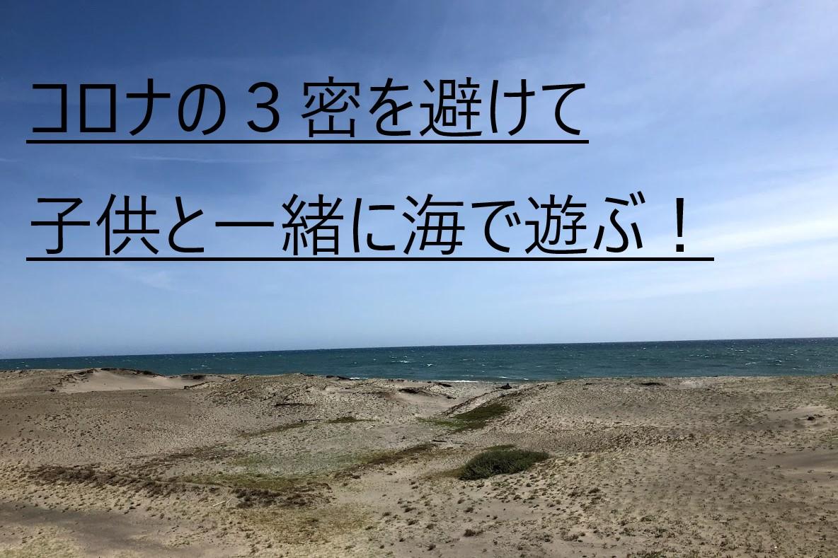 f:id:ken46abeshi:20200426224017j:plain