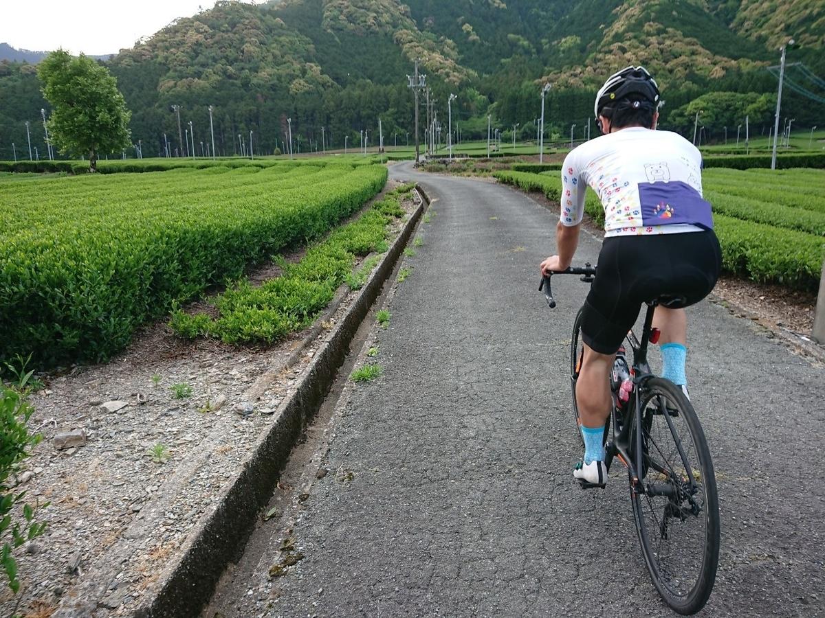 f:id:ken_chan_bike:20200514004053j:plain