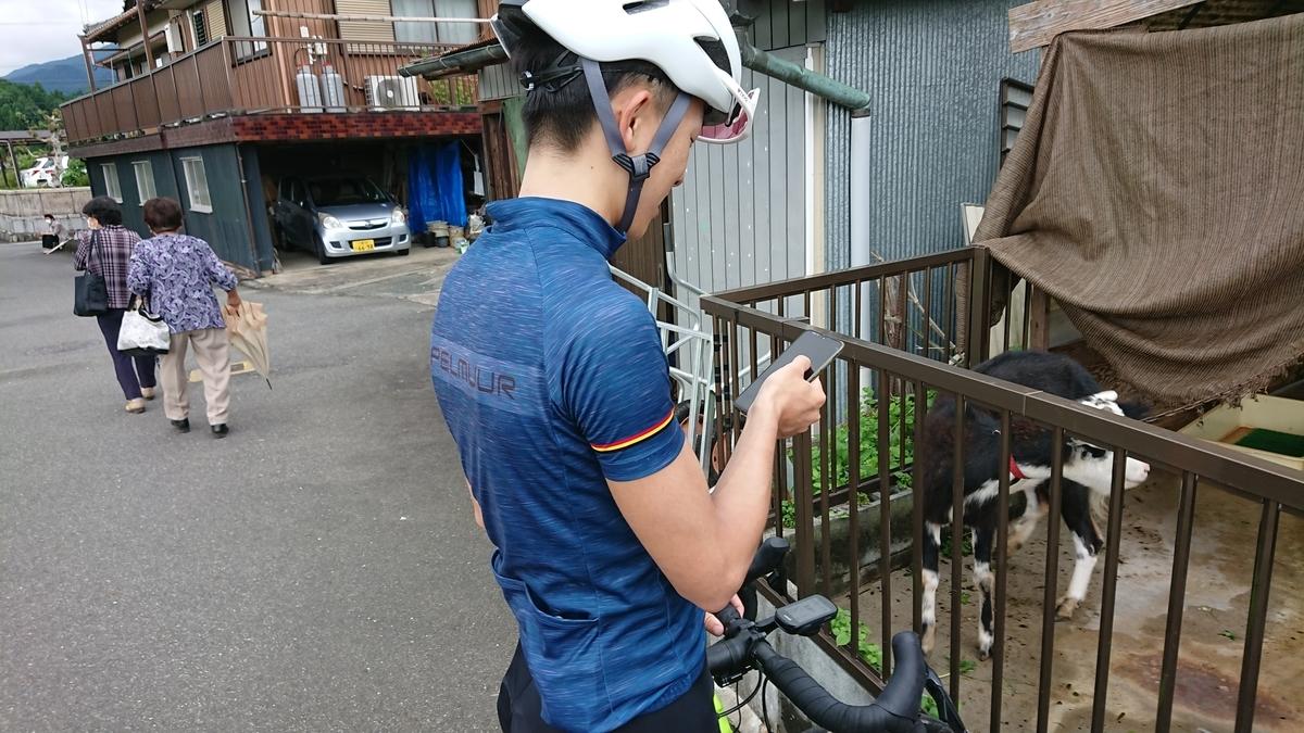 f:id:ken_chan_bike:20200715135802j:plain