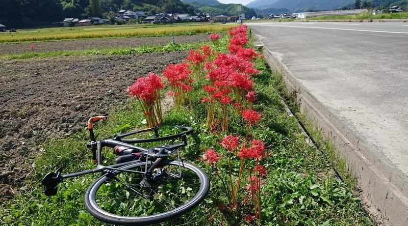 f:id:ken_chan_bike:20201002140659j:plain