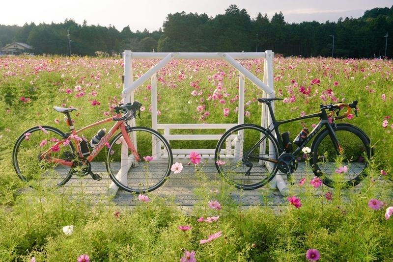 f:id:ken_chan_bike:20201023191059j:plain