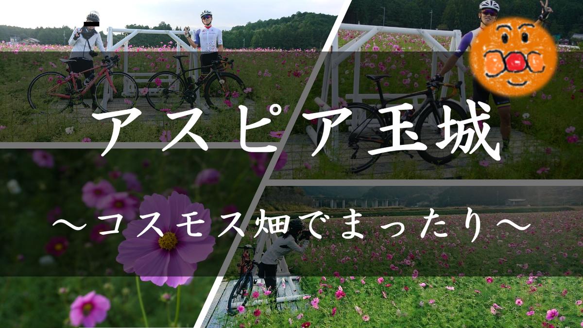 f:id:ken_chan_bike:20201023193424p:plain