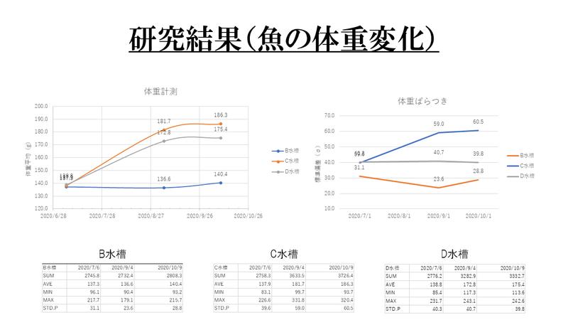 f:id:ken_chan_bike:20201030175655p:plain