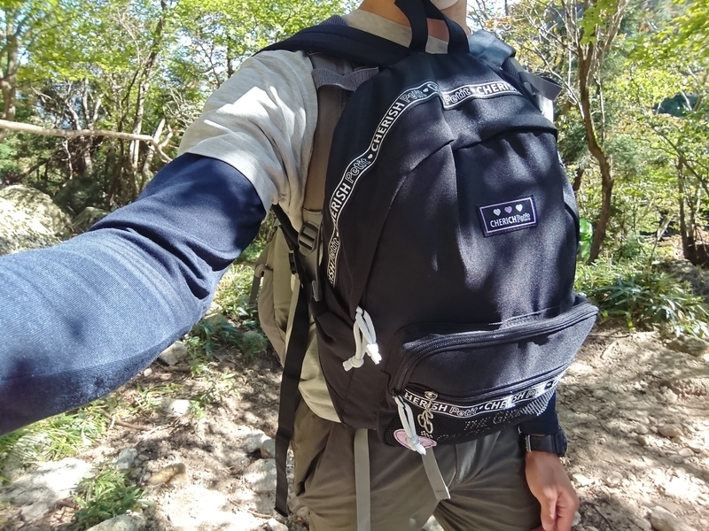 f:id:ken_chan_bike:20201107110747j:plain