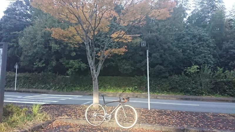 f:id:ken_chan_bike:20201107171251j:plain