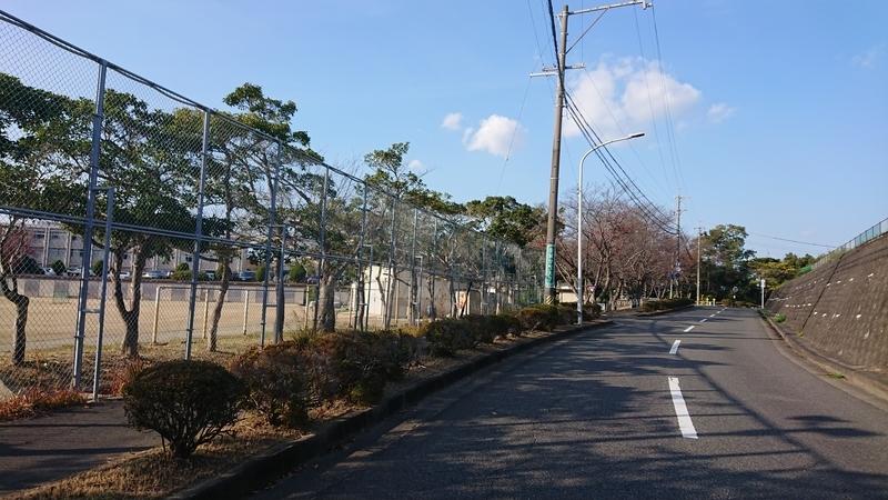 f:id:ken_chan_bike:20201116170324j:plain