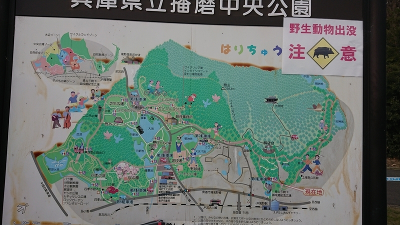f:id:ken_chan_bike:20201212211934j:plain