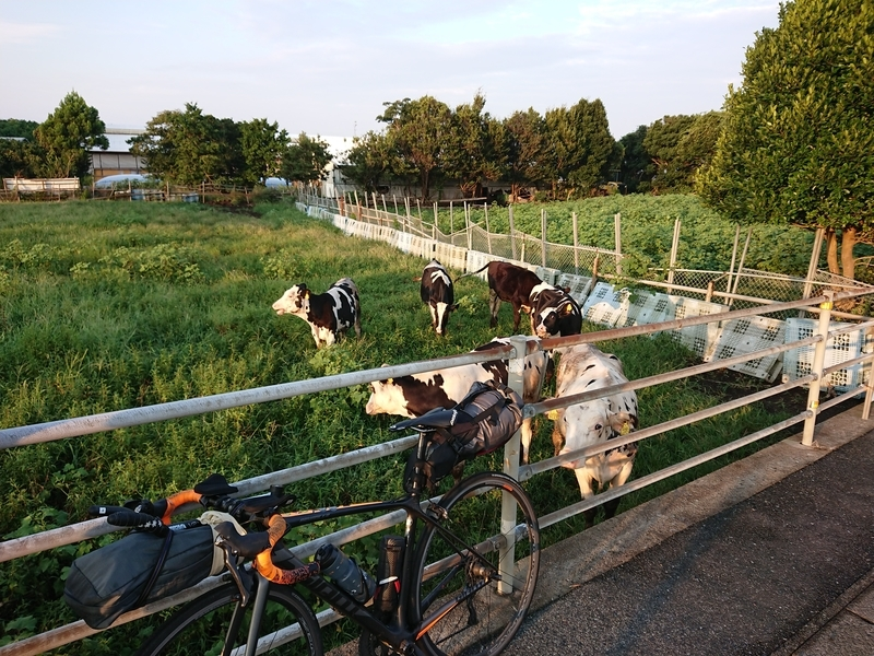 f:id:ken_chan_bike:20201217103211j:plain