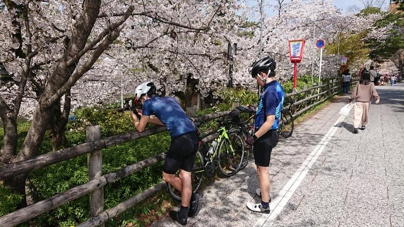 f:id:ken_chan_bike:20210331220741j:plain
