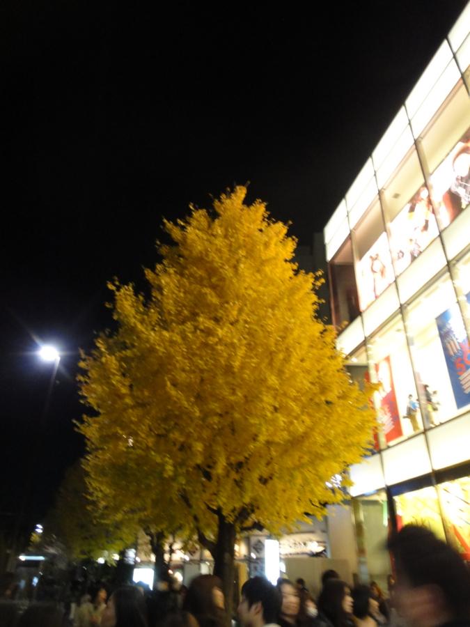 [20111217ハイク忘年会][ハイクオフ]