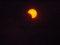 [金環日食][天体]