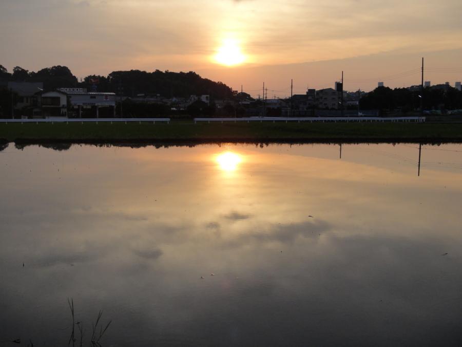 [空][夕][夏][風景]