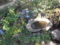 [広島][201403広島][庭園][縮景園]
