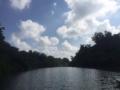 [2015家族沖縄][沖縄]マングローブカヤック