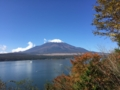[山中湖][富士山]ママの森展望台