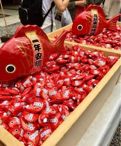 川越氷川神社のおみくじ