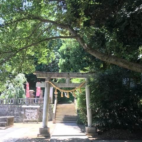 行田市・前玉神社の鳥居