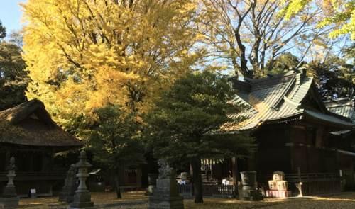 埼玉県加須市・玉敷神社