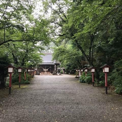 鷲宮神社の参道