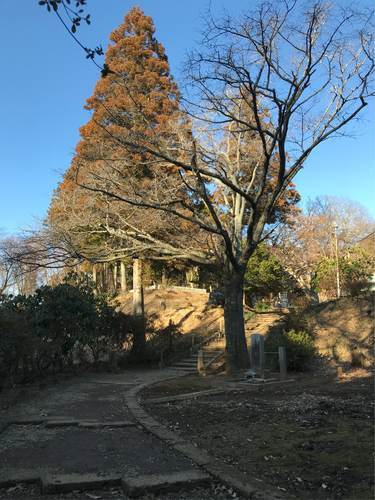 笠間市・正福寺