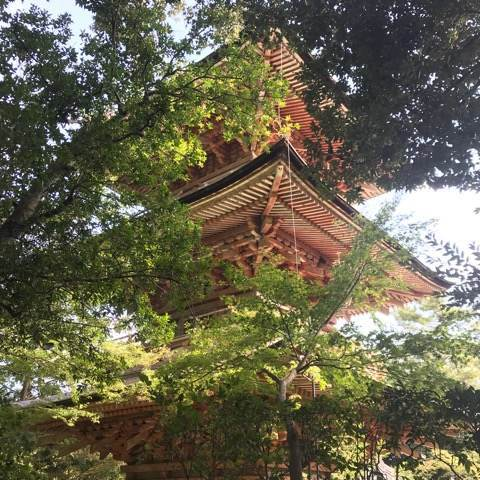 吉見観音安楽寺